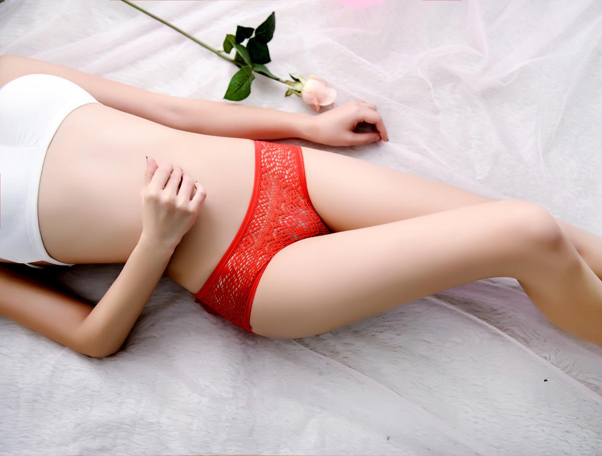 00219 Delicate Embroidered Lace Panties