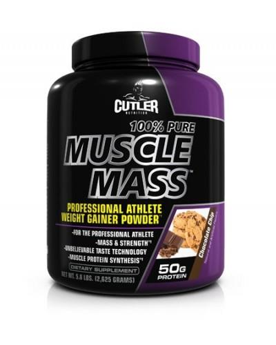 100% Pure Muscle Mass (6 LBS)