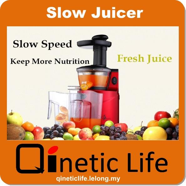 2015 Healthy Living Slow Juicer Stainless Steel Ju (end 8 ...
