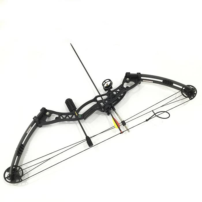 40-60LBS 10 arrows Left right Handed Compound Bow Archery Set