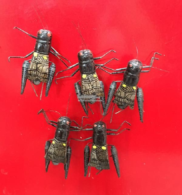 5 pcs Fridge Magnet Miniature Insect House Fly Collection Gift Decor