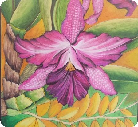 Art Crayon on Canvas Drawing - Orchid by ALKJ
