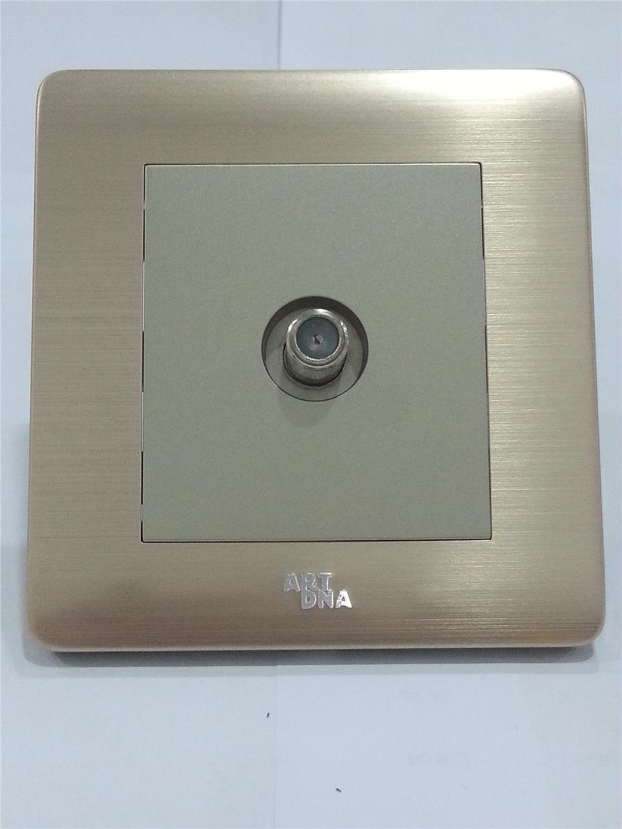 Art DNA A66 Series Single Satellite Socket (Brushed Golden)