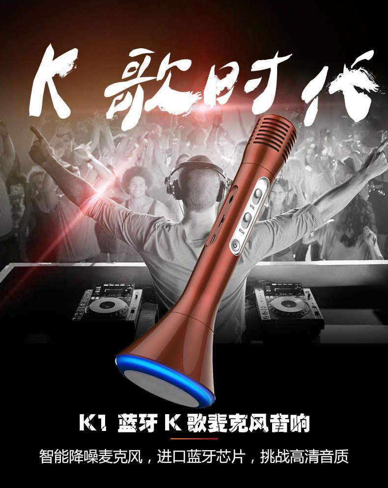 Bluetooth Wireless Microphone KaraokeOK Speaker KTV Player Sing K1
