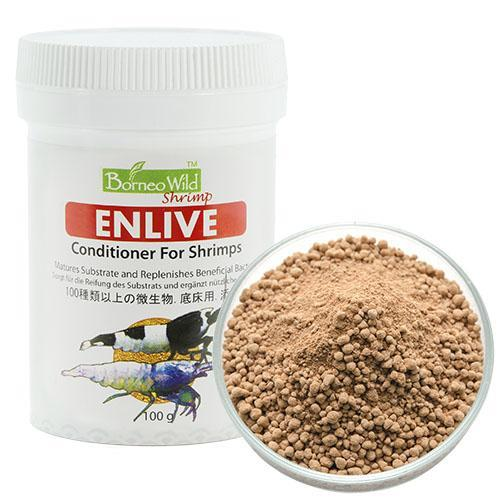 BORNEOWILD SHRIMP CONDITIONER - ENLIVE
