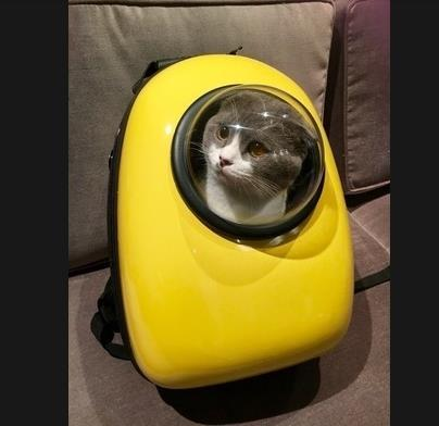Bubble Astronaut Pet Shoulder Bag Backpack Window Transparent Capsule