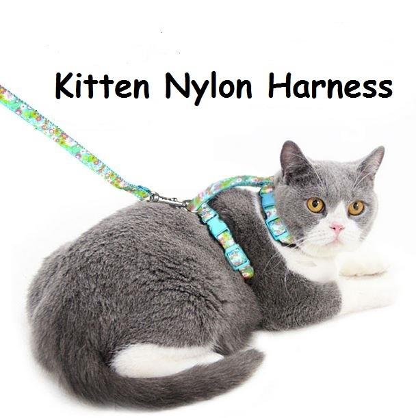 Cat rope harness with a chain leash
