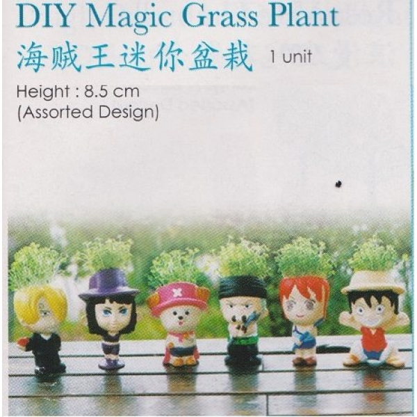 **CELLY** DIY MAGIC GRASS PLANT(ASSORTED DESIGN)