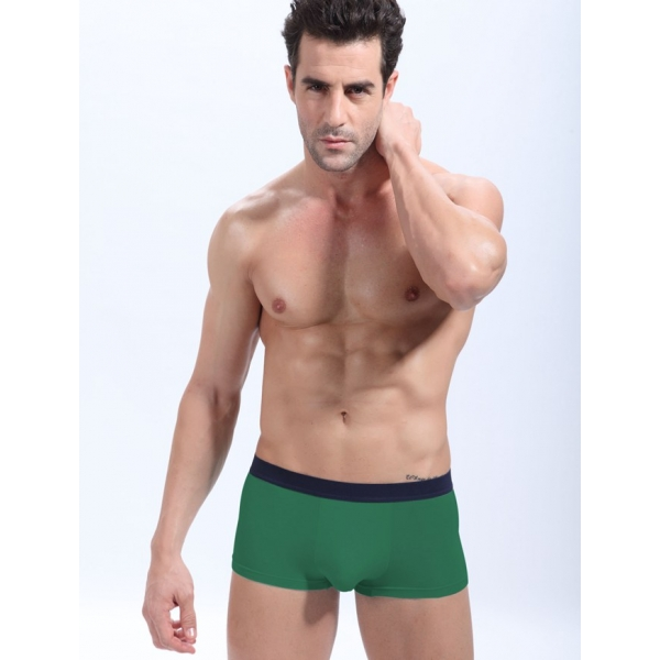 **CELLY**IMPORTED SEXY PANTY FOR MEN (GREEN)