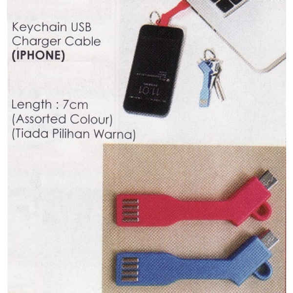 **CELLY** KEYCHAIN USB CHARGER CABLE (IPHONE)