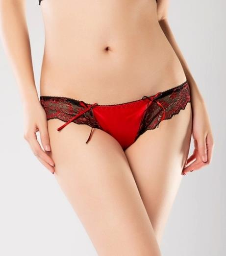 Charming Lace Satin Sexy Underwear