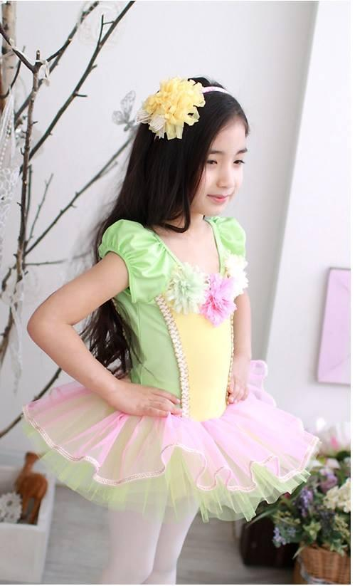 Colourful Ballet Dance Dress (Short Sleeve) Size 120