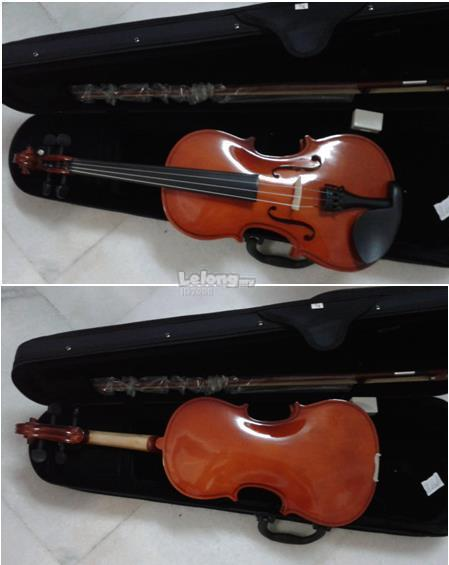 complete new violin