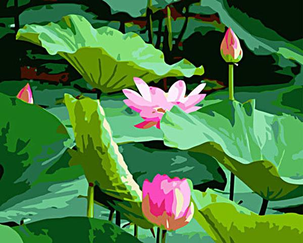 DIY Oil Painting 40*50cm Lotus