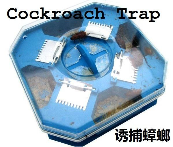 [EH393-11128] Cockroach Trap