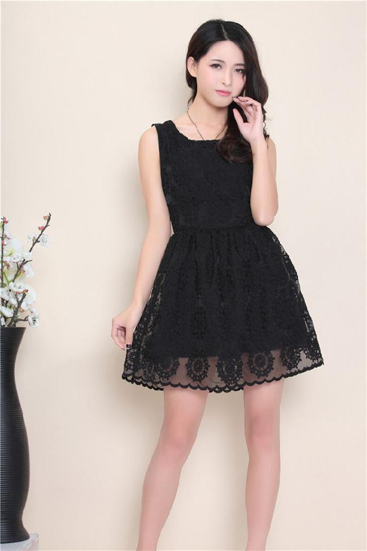 Elegant Lace Show-slim Dress (Black)