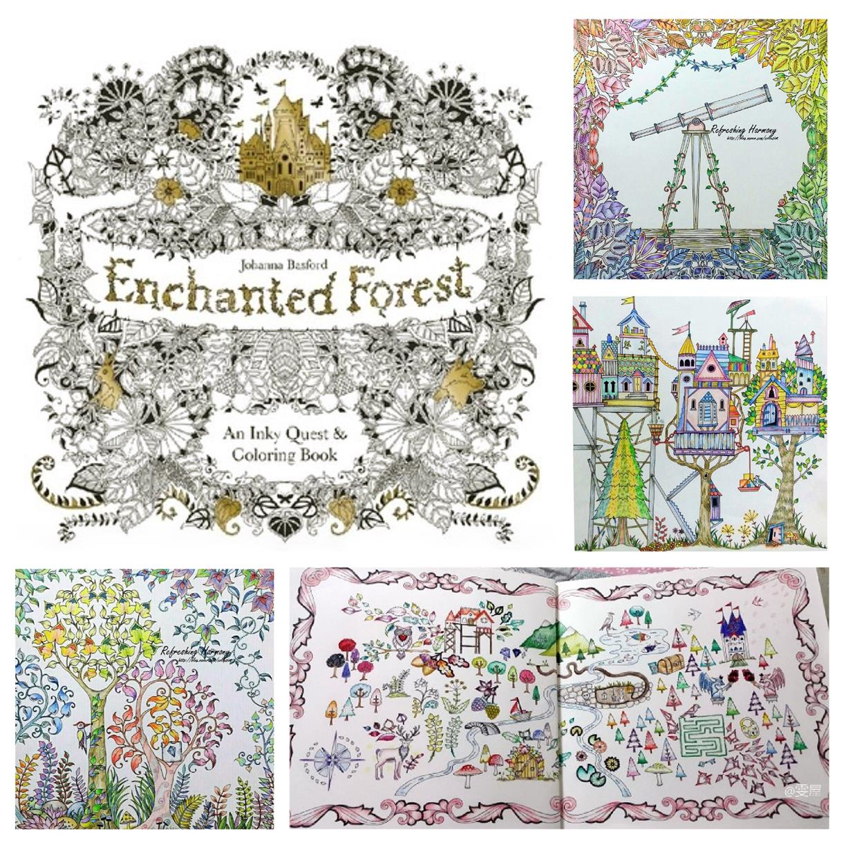 Enchanted Forest Colouring Book End 11 19 2015 415 PM