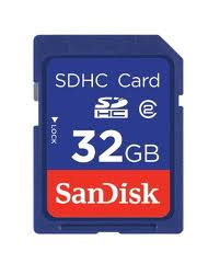 Enjoys: Real SanDisk Standard 32GB SD SDHC Memory Card ~Class 2