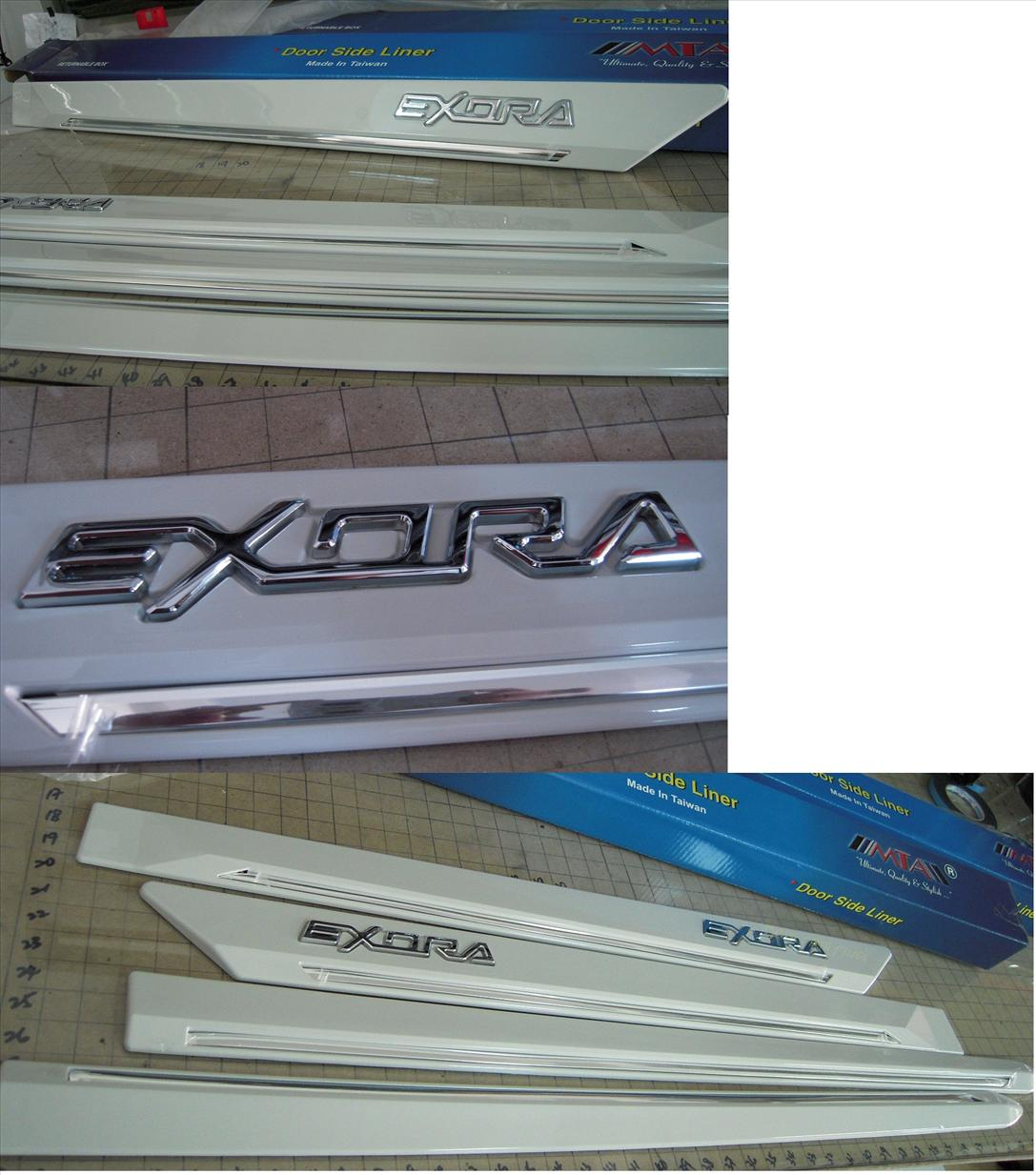 EXORA DOOR LINING WITH PAINT