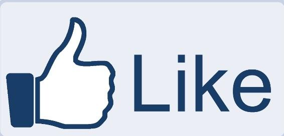 facebook Increase Your FaceBook 3000 Fan Page Like, likes REAL PERSON