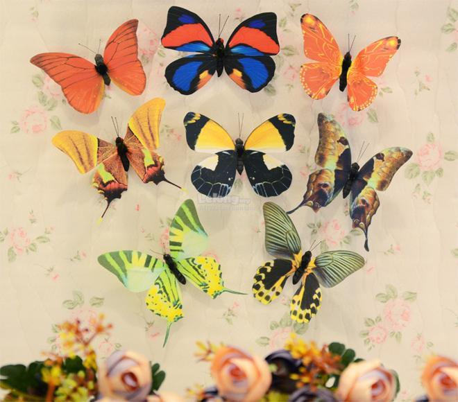 Fridge Magnet Plastic Wing Butterfly Gift Decoration (Set of 8)