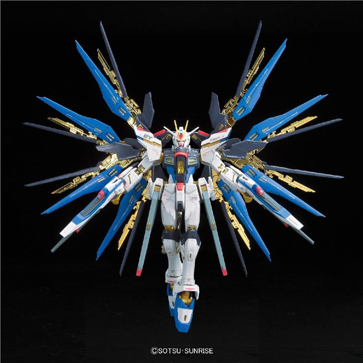 GaoGao Gundam MG 1/100 Strike Freedom with Crystal Wing & 2 Stands
