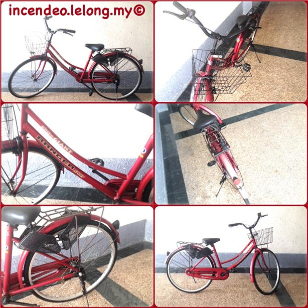 **Incendeo** - Pro-Giant Ranger Sport Bicycle (Red)