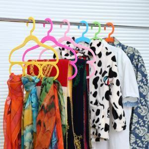 Korean Multi-function Fashion Hanger
