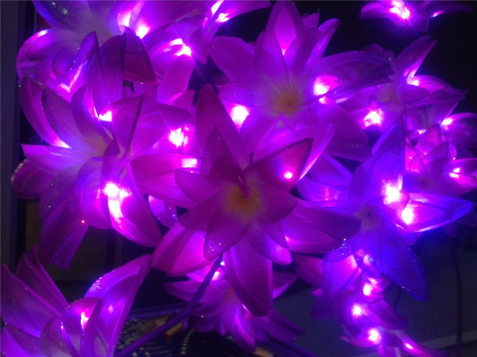 LED Decorative Flower SET Indo (end 9/8/2017 3:15 PM - MYT )
