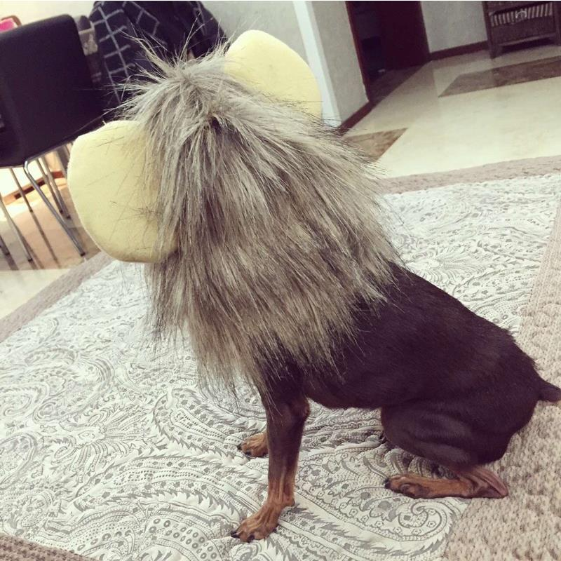Lion Wig Custome Clothes for Pet Cat Dog