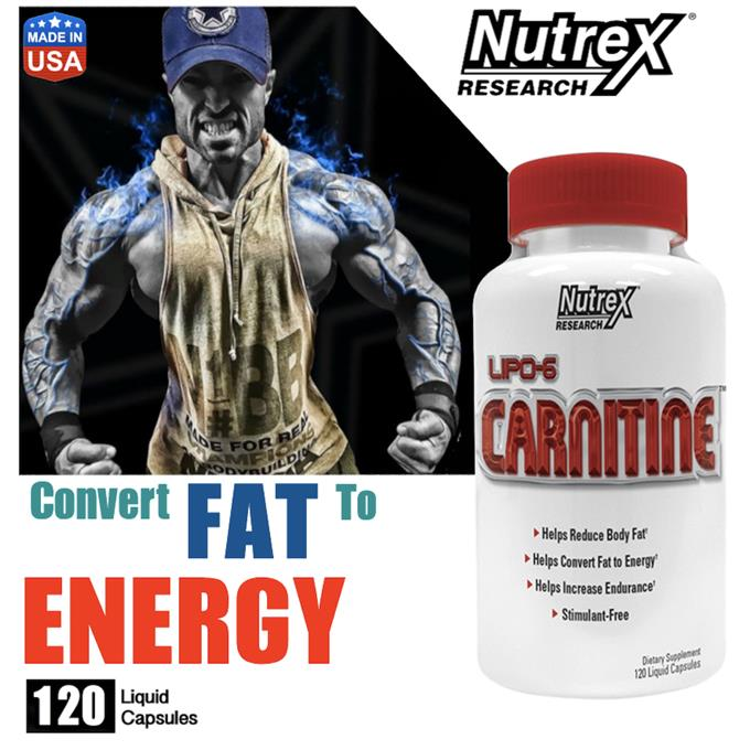 LIPO-6 Carnitine, 120 Softgels (Whey, Amino, Protein, Energy. Muscle)