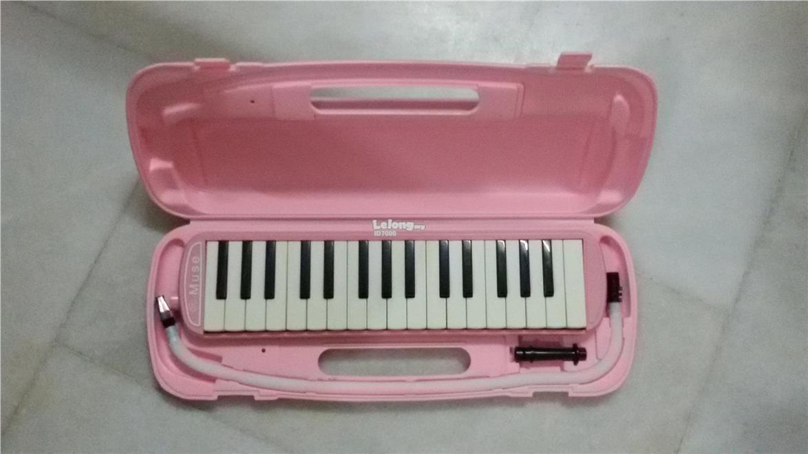 New Melodica with Hardcase, hose and 2 monthpieces