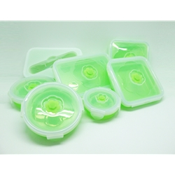 Oasis 7pcs Silicone Container FREE recipe book Jamuan Petang Bersama Chef Anua