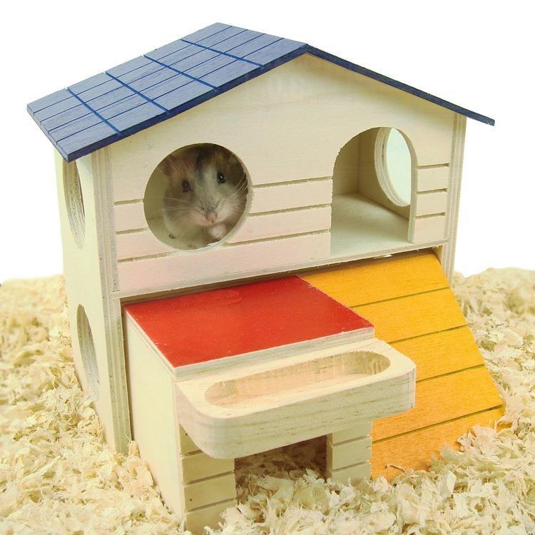 essay about my pet hamster Most pets require attention and maintenance during the day, so make sure you'll be home enough to take care of your pet if you have kids, consider what pets will be kid-friendly hamsters and fish, for example, make great early pets.
