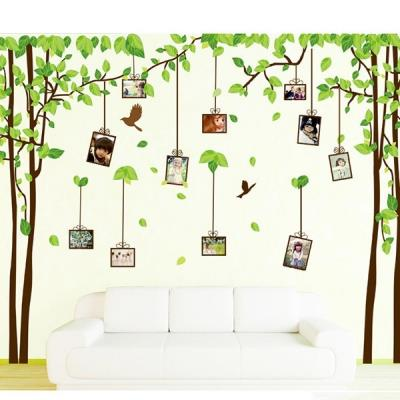 Photo Tree Wall Sticker DIY Removable Quote Art Decal Modern Wallpaper