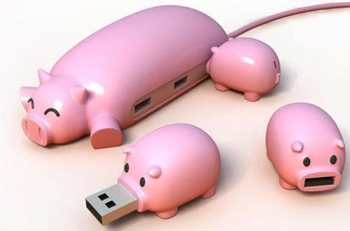 Piggy Usb Extension Hub