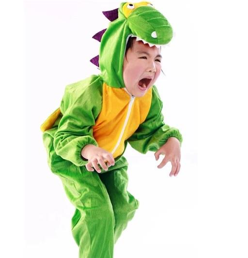 Promotion - Crocodile Kids Animal Costume Size : XL