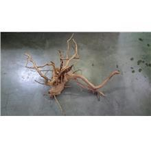 Root Wood XL (75cm-100cm) (E - H)