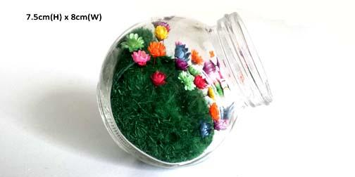 Secret Garden Indoor Real Small Mini Pet Flower - Candy Jar