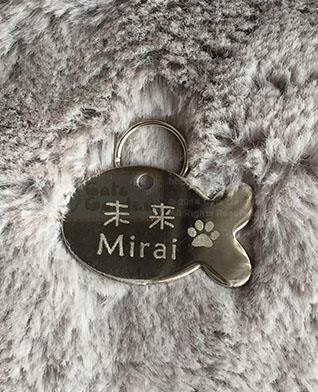 Stainless Steel Pet ID Tag - Fish