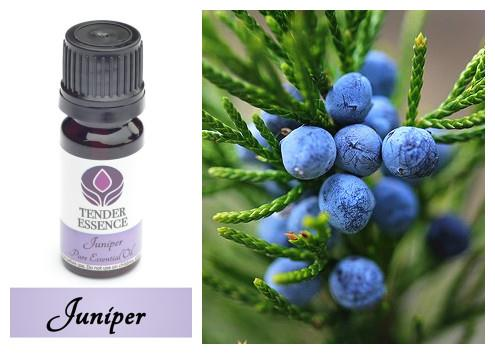 Tender Essence, 100% Pure Juniper Berry Essential Oil (10ml)