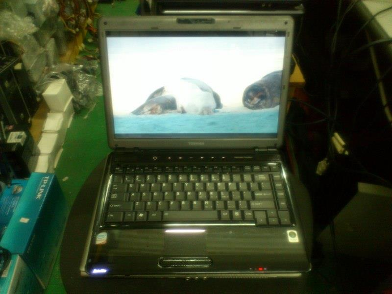 Toshiba Satellite M300 Intel P7450 Core 2 Duo Notebook 240415