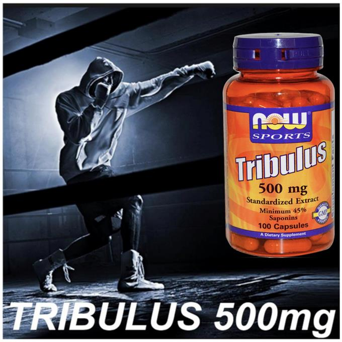 Tribulus 500mg, 100 Capsules, (Whey, Amino, Protein) Made in USA