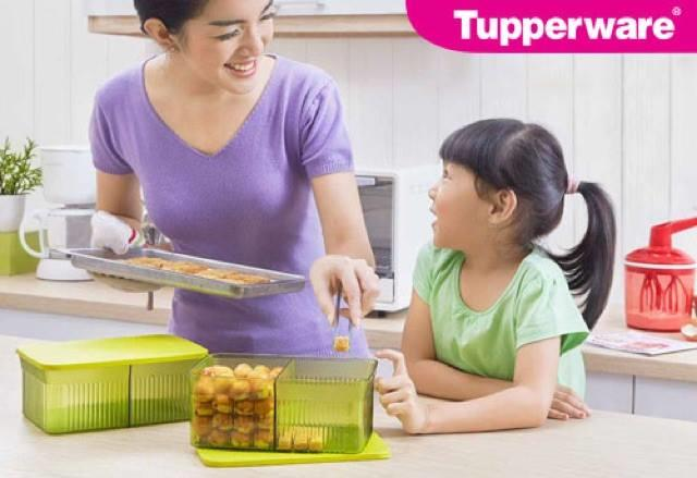 Tupperware Snack It Devided Container 1pcs 1.75L (green)