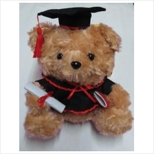 Teddy Bear with Graduation Gown and Scroll