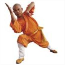 23 E-BOOKS OF MARTIAL ART IN A SINGLE CD