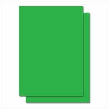 Fluorescent Color Label Sticker - A4 size - 100 sheets - Green (Item N