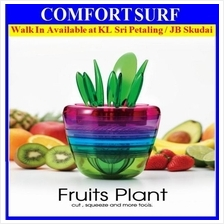 Fruits Plant multifunction fruits and vegetable 10 piece kitchen tool