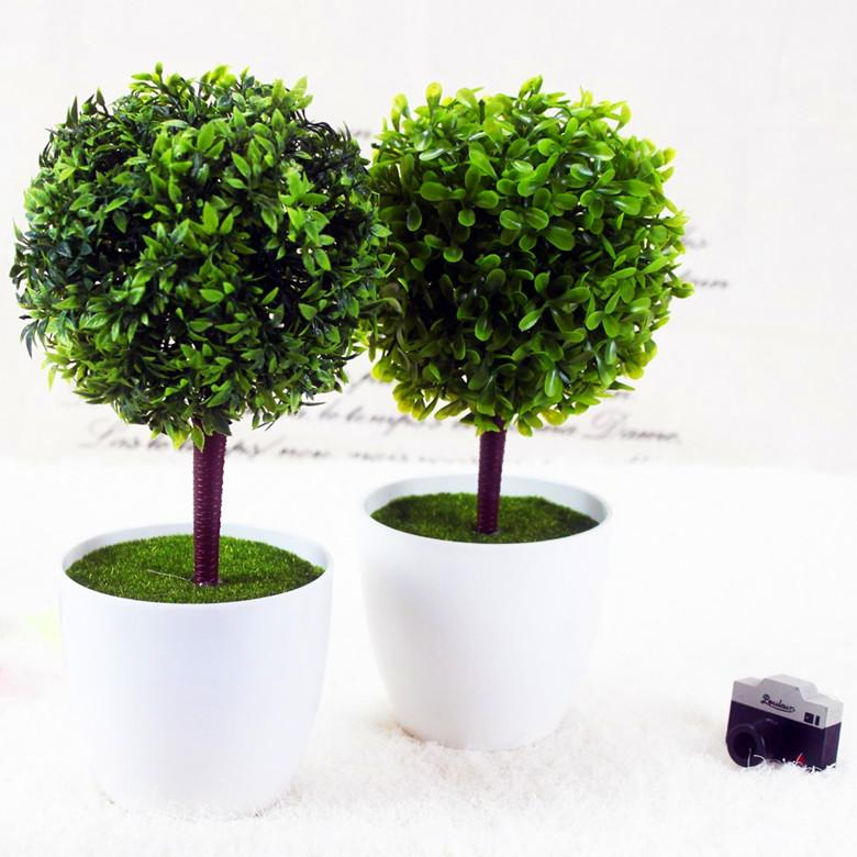 Where To Buy Decorative Plants For Living Room