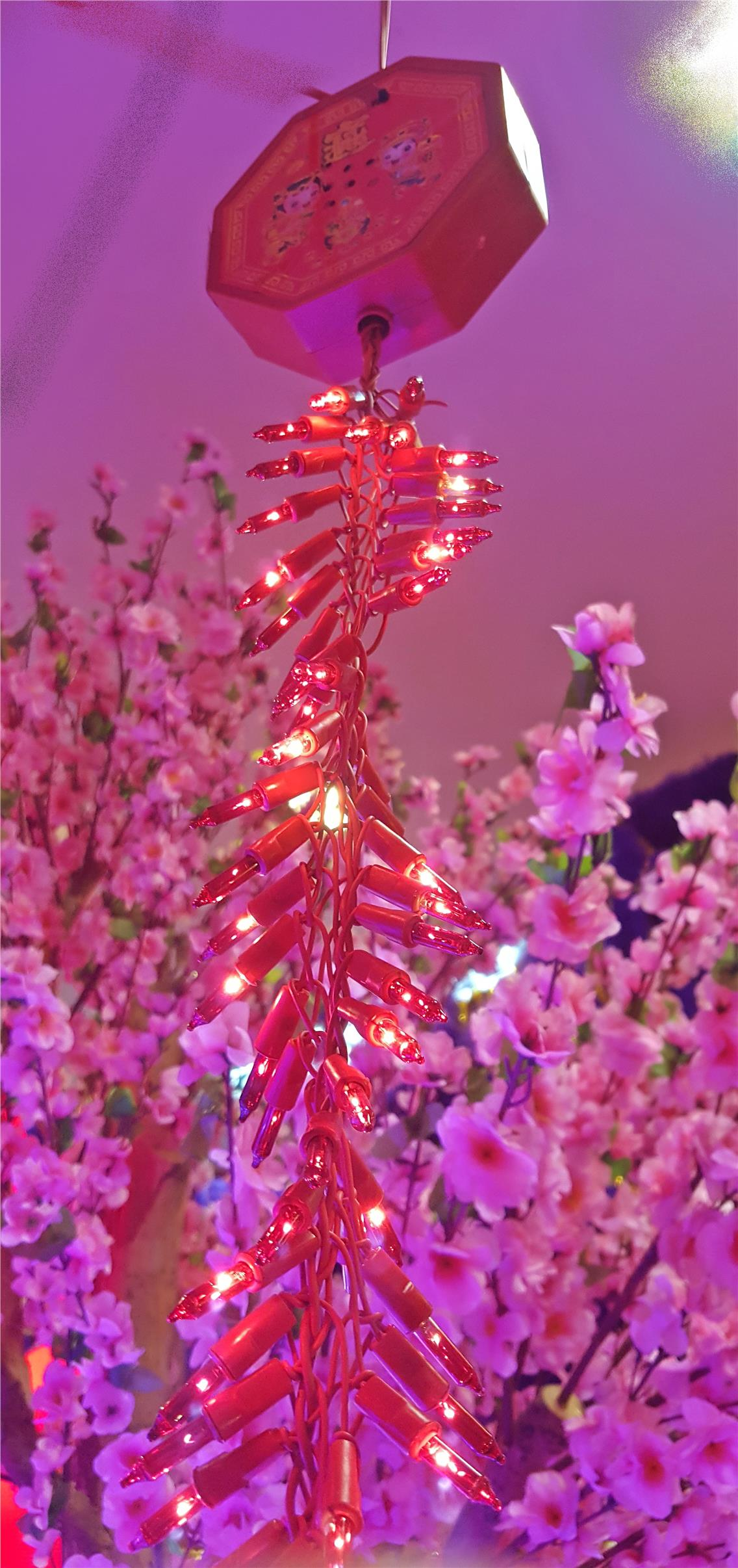 Chinese New Year (CNY) Decoration - Fire Crackers with Lights
